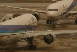 うまやどのおいるさんが、羽田空港で撮影した全日空 767-381/ERの航空フォト(飛行機 写真・画像)