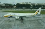 しんさんが、シンガポール・チャンギ国際空港で撮影したミャンマー国際航空 A320-214の航空フォト(写真)
