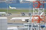 タマさんが、羽田空港で撮影したメキシコ空軍 757-225の航空フォト(飛行機 写真・画像)