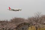 hiko_chunenさんが、成田国際空港で撮影した日本航空 767-346の航空フォト(写真)