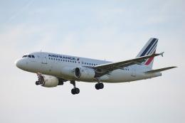 taka777さんが、ナント・アトランティック空港で撮影したエールフランス航空 A319-111の航空フォト(飛行機 写真・画像)