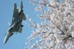 Hottyさんが、岐阜基地で撮影した航空自衛隊 F-15J Eagleの航空フォト(写真)