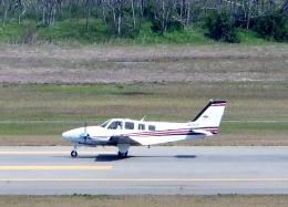 東方亜州さんが、新潟空港で撮影した航空大学校 Baron G58の航空フォト(写真)