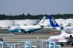 パンダさんが、成田国際空港で撮影したサハリン航空 737-232/Advの航空フォト(飛行機 写真・画像)