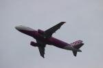 uhfxさんが、関西国際空港で撮影したピーチ A320-214の航空フォト(飛行機 写真・画像)