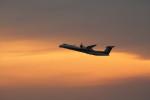アイスコーヒーさんが、成田国際空港で撮影したエアーニッポンネットワーク DHC-8-402Q Dash 8の航空フォト(写真)