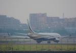 ギ―ピロさんが、羽田空港で撮影したセブン・スリー・セブン・ツー・アヴィエーション 737-8KTの航空フォト(写真)