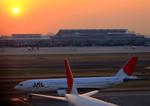ふじいあきらさんが、羽田空港で撮影した日本航空 A300B4-622Rの航空フォト(飛行機 写真・画像)