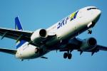 rjnsphotoclub-No.07さんが、羽田空港で撮影したスカイマーク 737-82Yの航空フォト(飛行機 写真・画像)
