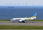 ふじいあきらさんが、羽田空港で撮影したAIR DO 737-781の航空フォト(飛行機 写真・画像)