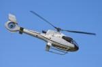 東京ヘリポート - Tokyo Heliport [RJTI]で撮影された法人所有 - Japanese Company Ownershipの航空機写真
