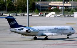 Severemanさんが、ヴェネツィア マルコ・ポーロ国際空港で撮影したALPIイーグルス 100の航空フォト(写真)