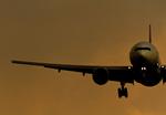 しゅあさんが、伊丹空港で撮影した日本航空の航空フォト(飛行機 写真・画像)