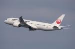 WING_ACEさんが、関西国際空港で撮影した日本航空 787-8 Dreamlinerの航空フォト(飛行機 写真・画像)