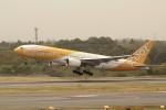 アイスコーヒーさんが、成田国際空港で撮影したスクート (〜2017) 777-212/ERの航空フォト(写真)