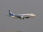 aquaさんが、羽田空港で撮影した全日空 737-881の航空フォト(写真)