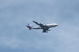 NEMO11223300さんが、木更津飛行場で撮影した全日空 747-481(D)の航空フォト(飛行機 写真・画像)