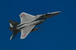 カヤノユウイチさんが、米子空港で撮影した航空自衛隊 F-15DJ Eagleの航空フォト(飛行機 写真・画像)