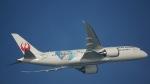 Seiiさんが、シンガポール・チャンギ国際空港で撮影した日本航空 787-8 Dreamlinerの航空フォト(写真)