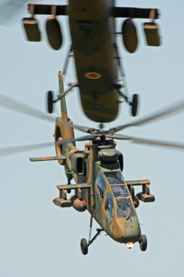 gucciyさんが、木更津飛行場で撮影した陸上自衛隊 OH-1の航空フォト(飛行機 写真・画像)