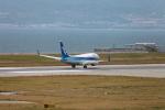 たろさんが、関西国際空港で撮影した全日空 737-781の航空フォト(写真)