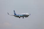 たろさんが、関西国際空港で撮影した全日空 737-881の航空フォト(写真)