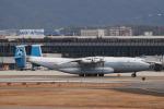 RUSSIANSKIさんが、伊丹空港で撮影したアントノフ・エアラインズ An-22 Anteiの航空フォト(飛行機 写真・画像)