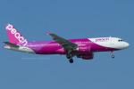 Scotchさんが、那覇空港で撮影したピーチ A320-214の航空フォト(写真)