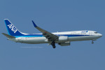 Scotchさんが、那覇空港で撮影した全日空 737-881の航空フォト(写真)