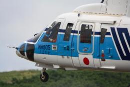 bushitsukeさんが、函館空港で撮影した海上保安庁 S-76C+の航空フォト(飛行機 写真・画像)