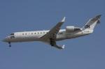 ムギムギさんが、ドバイ国際空港で撮影した国際連合 CL-600-2B19 Regional Jet CRJ-200LRの航空フォト(写真)