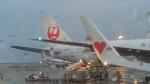 GE90777-300ERさんが、那覇空港で撮影した日本航空 777-346の航空フォト(飛行機 写真・画像)