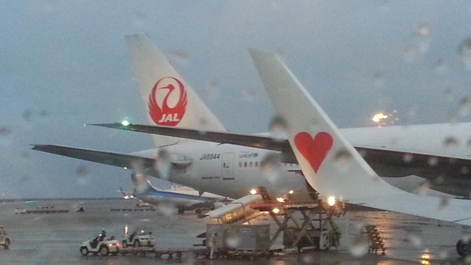 GE90777-300ERさんの日本航空 Boeing 777-300 (JA8944) 航空フォト