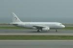しんさんが、香港国際空港で撮影したサウス・イースト・アジアン・エアラインズ A319-132の航空フォト(写真)