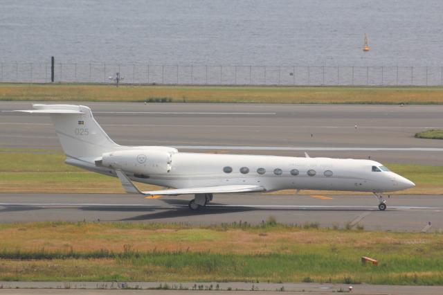 スウェーデン空軍 航空フォト(飛行機 写真・画像) 羽田空港 写真+詳細 ...