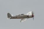 eagletさんが、チノ空港で撮影したprivate Sea Fury FB.11の航空フォト(写真)