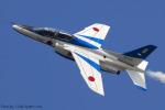 Chofu Spotter Ariaさんが、静浜飛行場で撮影した航空自衛隊 T-4の航空フォト(飛行機 写真・画像)
