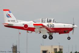 Chofu Spotter Ariaさんが、静浜飛行場で撮影した航空自衛隊 T-7の航空フォト(飛行機 写真・画像)