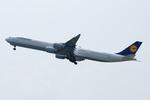Severemanさんが、関西国際空港で撮影したルフトハンザドイツ航空 A340-642の航空フォト(写真)