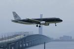 Severemanさんが、関西国際空港で撮影したスターフライヤー A320-214の航空フォト(写真)