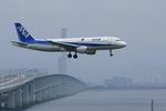 Severemanさんが、関西国際空港で撮影した全日空 A320-211の航空フォト(写真)