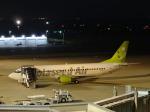 T.Sazenさんが、神戸空港で撮影したスカイネットアジア航空 737-46Mの航空フォト(飛行機 写真・画像)