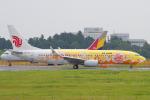 Scotchさんが、成田国際空港で撮影した中国国際航空 737-89Lの航空フォト(写真)