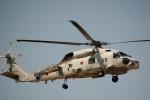 Dojalanaさんが、函館空港で撮影した海上自衛隊 SH-60Jの航空フォト(写真)