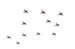 c59さんが、静浜飛行場で撮影した航空自衛隊 T-7の航空フォト(飛行機 写真・画像)