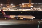 xxxxxzさんが、羽田空港で撮影したハワイアン航空 767-3G5/ERの航空フォト(写真)