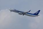 xxxxxzさんが、新千歳空港で撮影した全日空 737-881の航空フォト(飛行機 写真・画像)