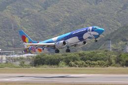 HACで撮影されたエアーニッポン - Air Nippon [EL/ANK]の航空機写真