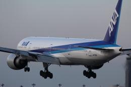 787 yrさんが、成田国際空港で撮影した全日空 777-381/ERの航空フォト(飛行機 写真・画像)