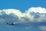 rjnsphotoclub-No.07さんが、中部国際空港で撮影した全日空 777-281の航空フォト(飛行機 写真・画像)